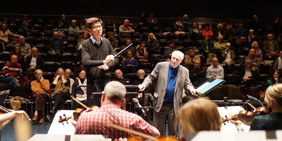 Bernard Haitink Master Class with Lucerne Festival Strings