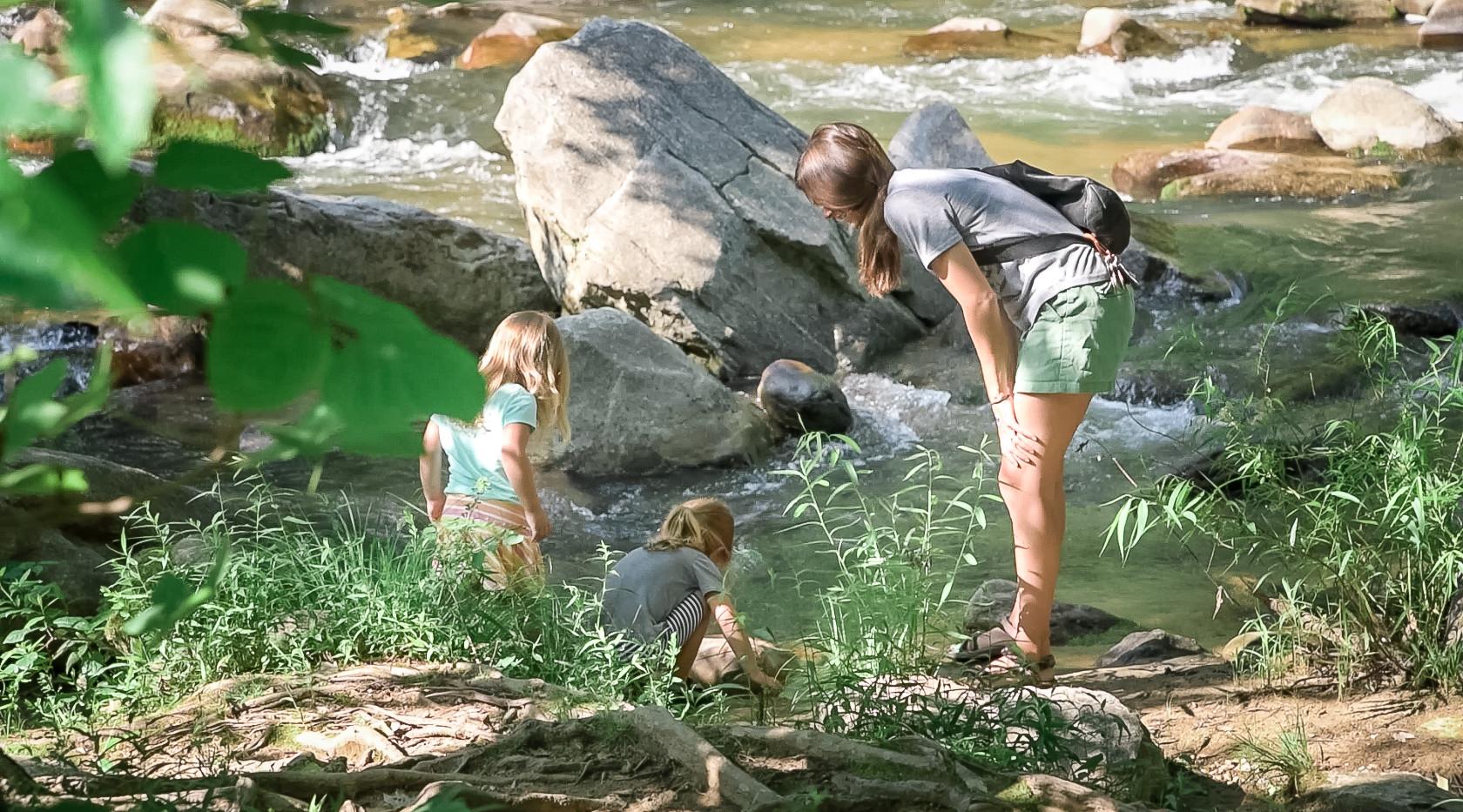 Rocky Broad River Family.jpg