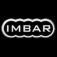 2019_Gapology Website Design_IMBAR Sq Lo