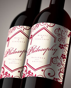 Philosophy_Bottle_2.jpg