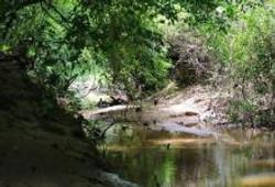 rocky creek 2_0