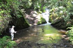 Deep Creek (2)