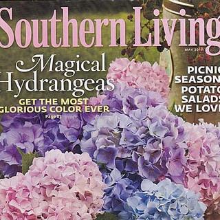 southern living_edited.jpg