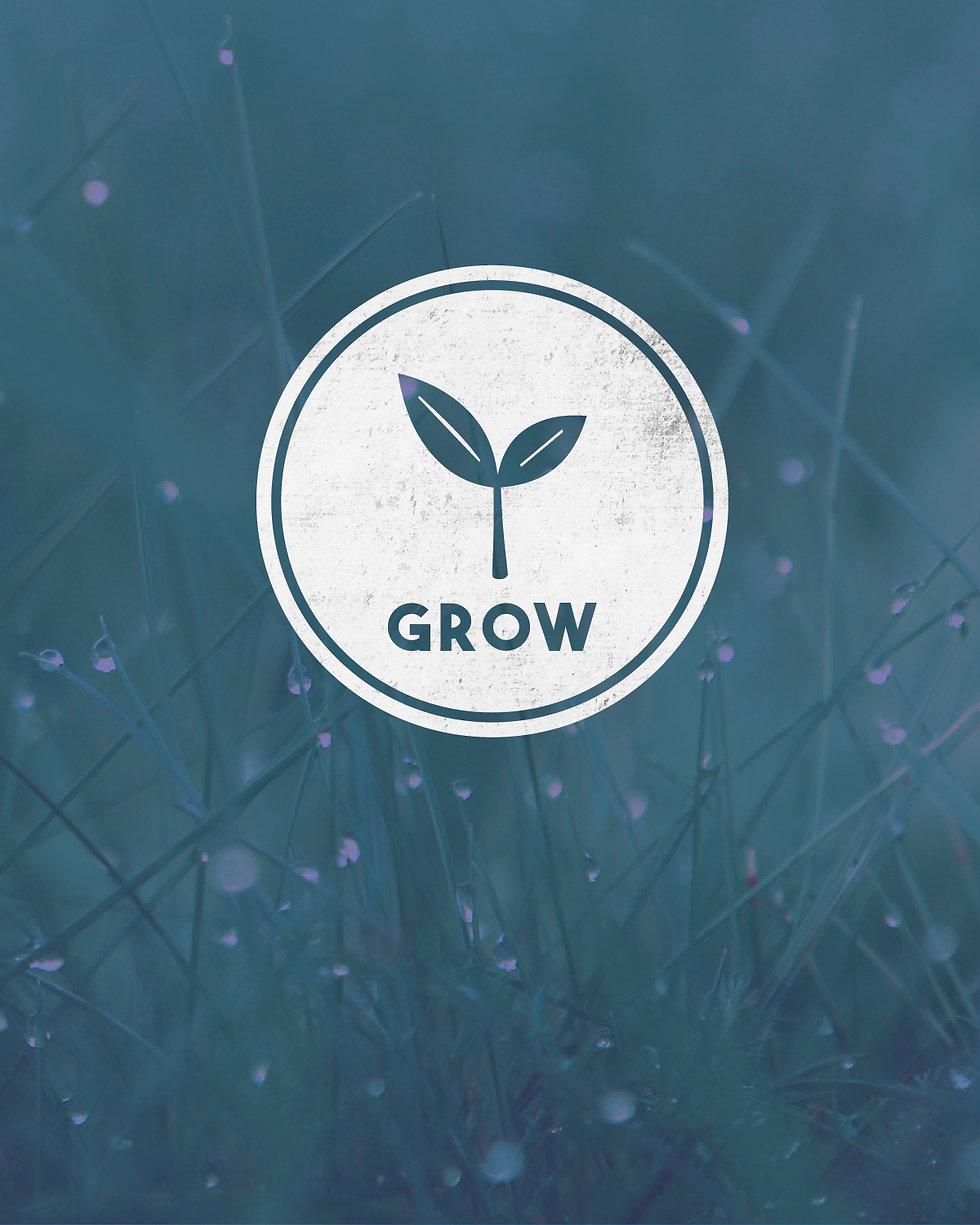 GrowGroups-Book-01.jpg
