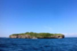 M&L Diver Town,セブ島,モアルボアル,ダイビング