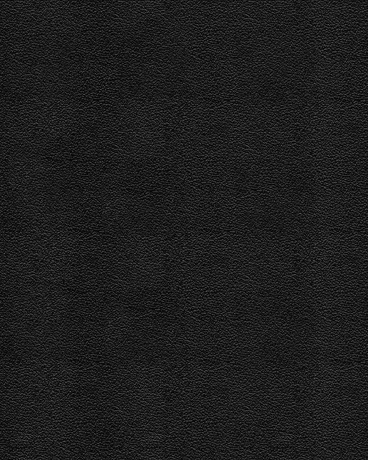 11 sagesmask - leather texture.jpg
