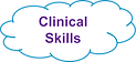 clinical skills blast image.png