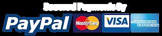 paypal-credit-card-logos-png-7.png