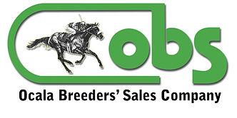 OBS logo with black name GREEN logo  SHA