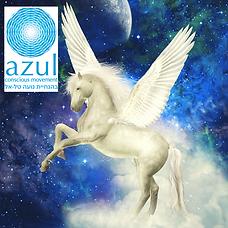 פלייר AZUL.png