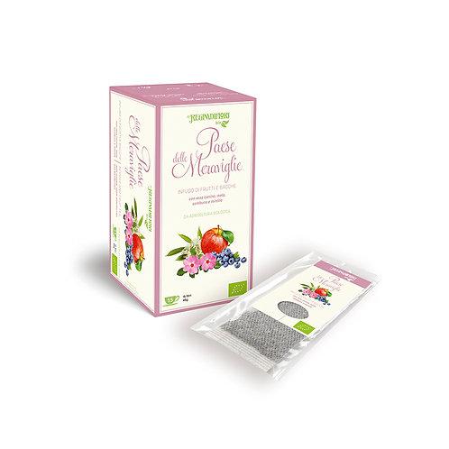Organic Fruit Herbal Tea with rosehip, apple, elderberry & blueberry -15x3gr bag