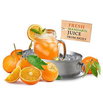 Citrus Juices.jpg