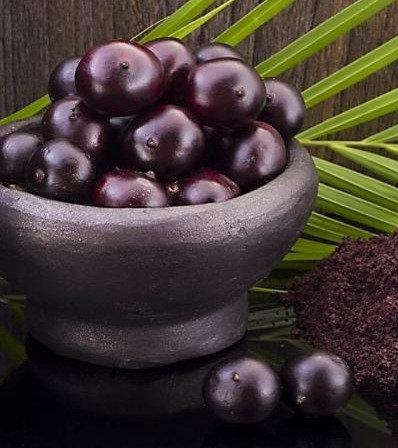Acai Berries - Frozen Fruit Puree - 10% natural sugar - 1kg