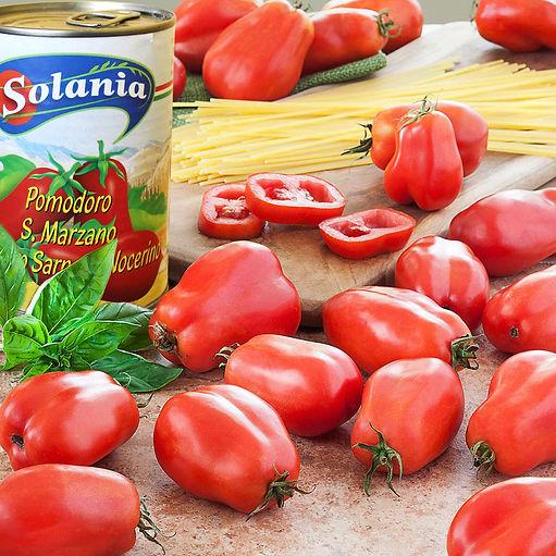 San-Marazano-Heirloom-Tomato pix.jpg