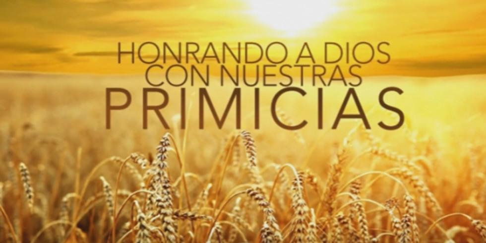 PRIMICIAS CON VISION DE REINO