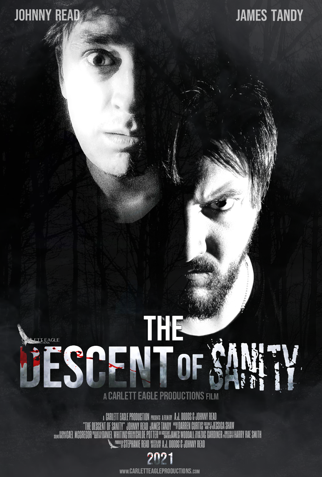 The Descent of Sanity Poster