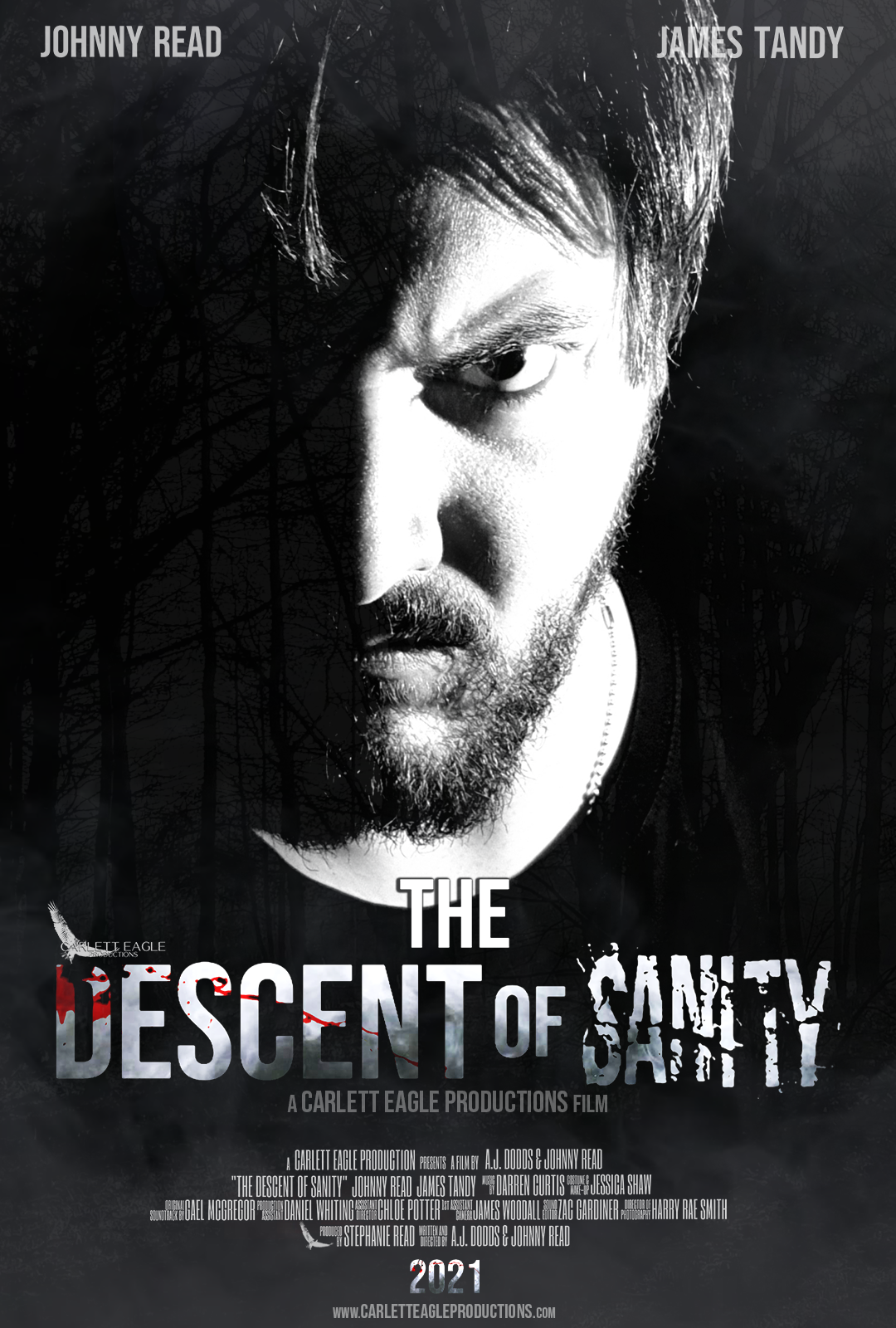 The Descent of Sanity Poster - Johnny Read as DS Steven Lee