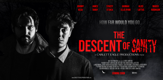 THE DESCENT OF SANITY BANNER SOCIAL-STREAMING POSTER.png