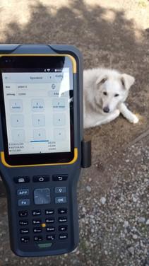Gyorskódolás Földmérő Kutyával