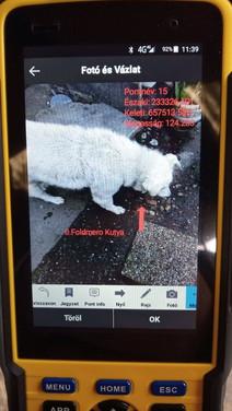Fotó és vázlat a II. Földmérő Kutyáról