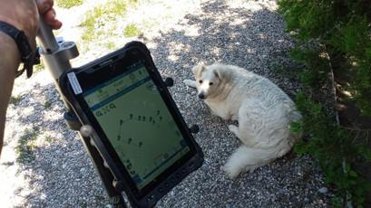 Még FLOAT, ennek a II. Földmérő Kutya sem örül