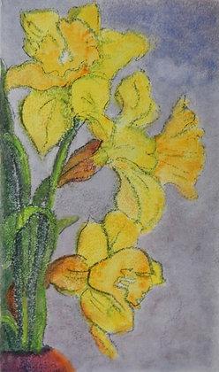 Daffodils, Symbols of Hope and New Beginnings