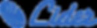 logo-Lider-web.png