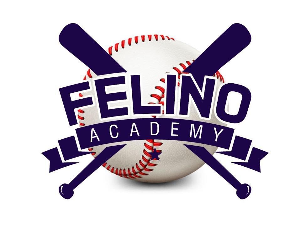 Foto Logo Felino Academy