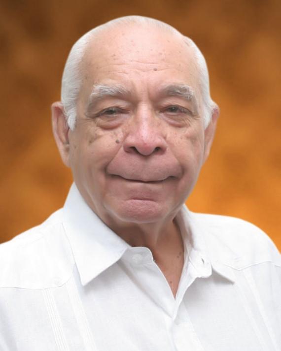 Papi Bisonó