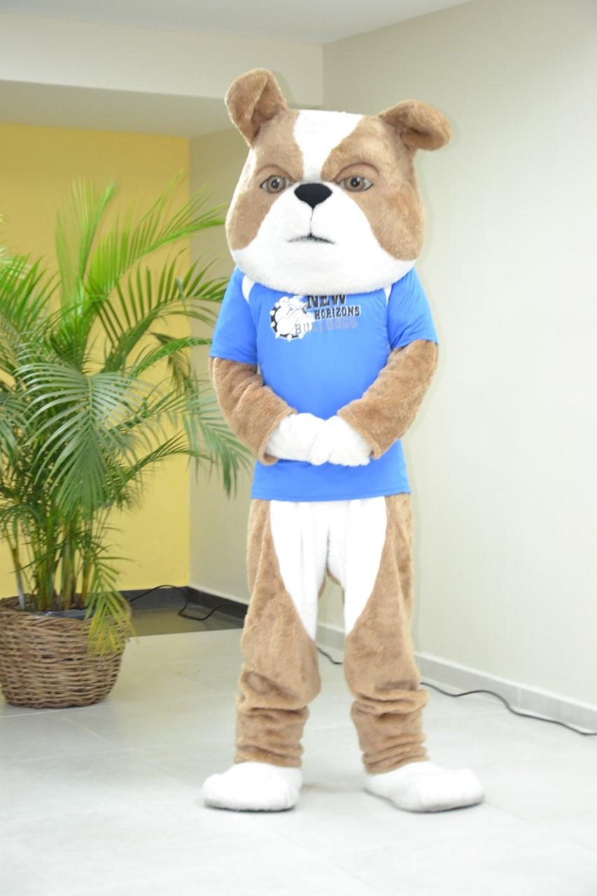 Bulldog mascota del CDP