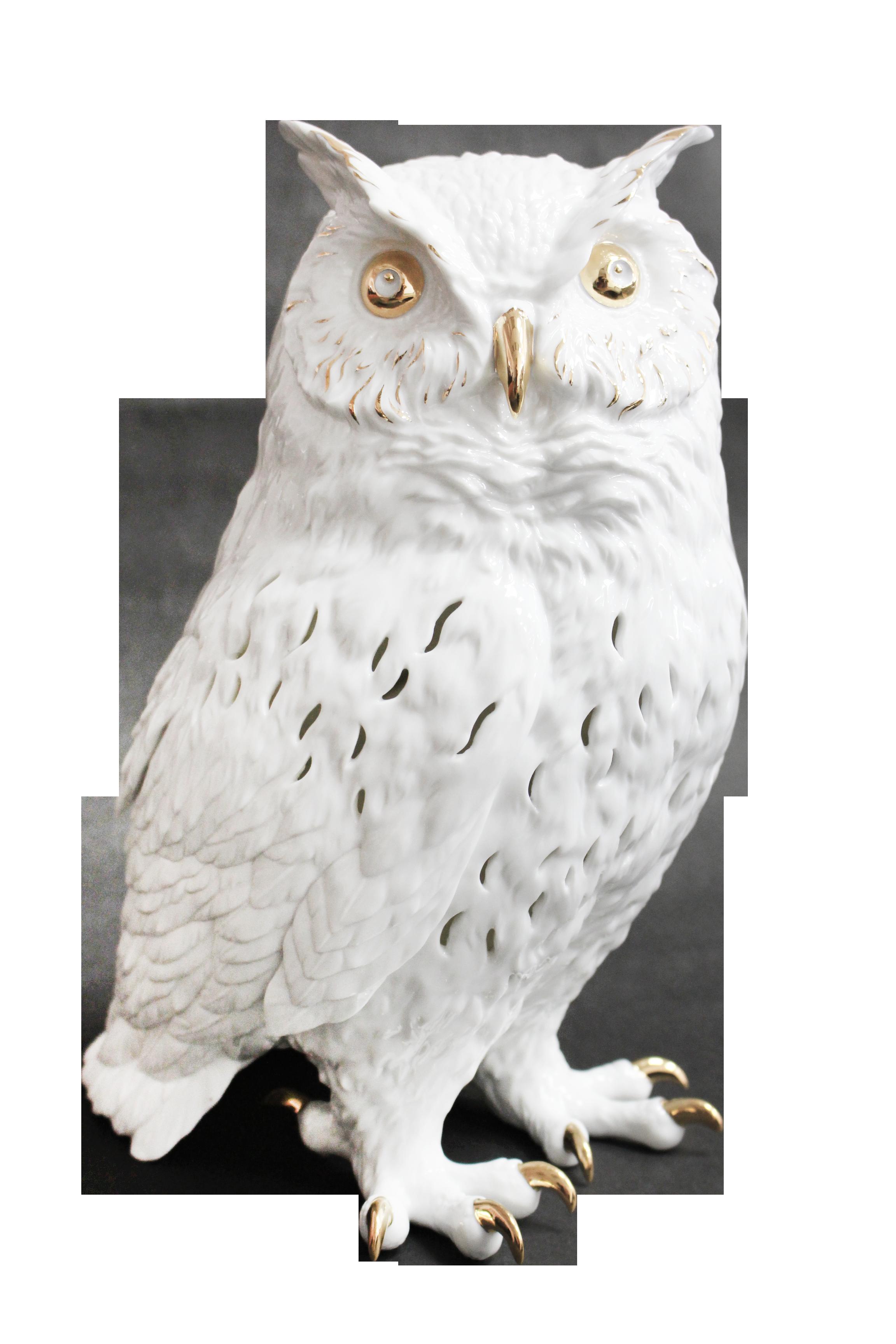 睿智Owl Lamps