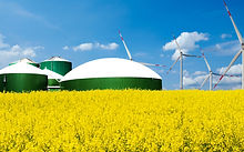 Biogas plant stands behind a rape field