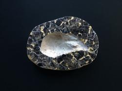 michaela_goldberg_eggshell fossil
