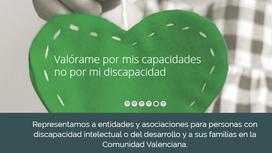 Programa 178 - Plena Inclusión Comunidad Valenciana