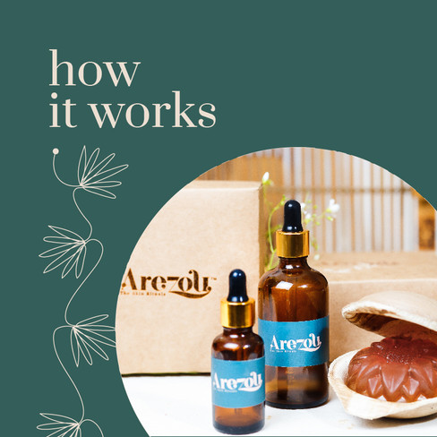 Arezou Brochure for Wix-11.jpg
