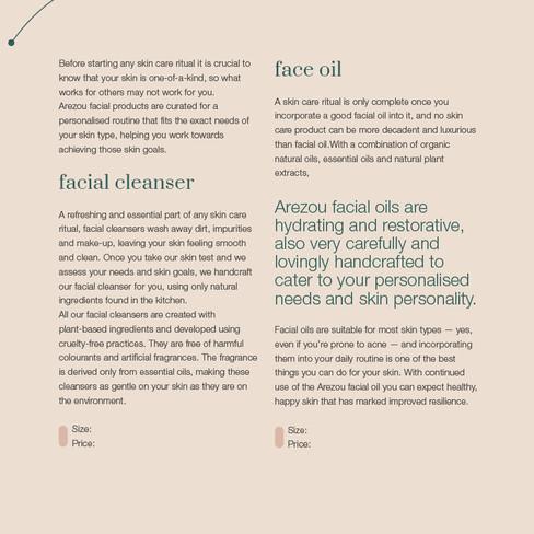 Arezou Brochure for Wix-04.jpg