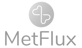 metflux logo.jpg
