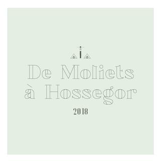 De Molliets à Hossegor, en passant par Vieux-Boucau.