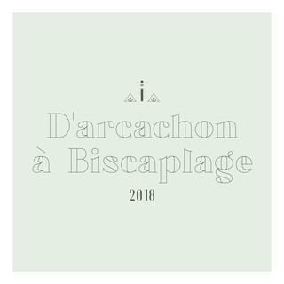 D'Arcachon vers Biscarosse-plage