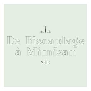 De Biscarosse plage à Mimizan.