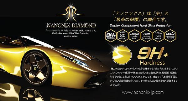 DIAMOND Leaflet 1.jpg