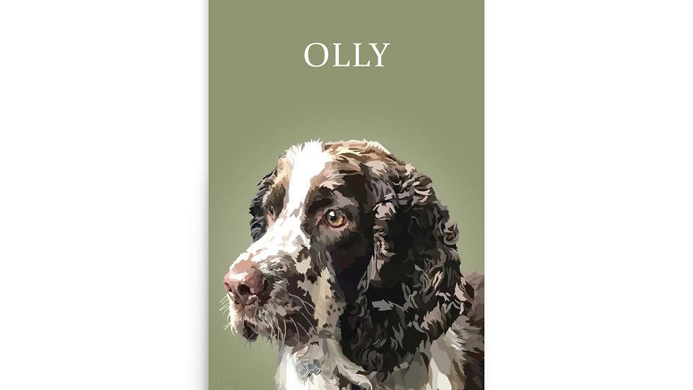 OLLY - 12X18 Print
