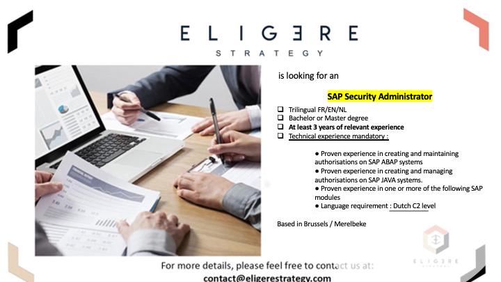 SAP Security Administrator.png