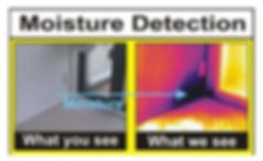 "alt="" Thermal imaging to help us find Damp Problems"""