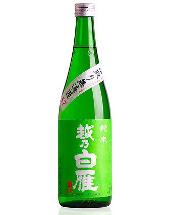 越乃白雁 中取無濾過 純米 春限定生酒