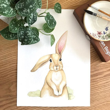 Aquarellhase ❤️🐰