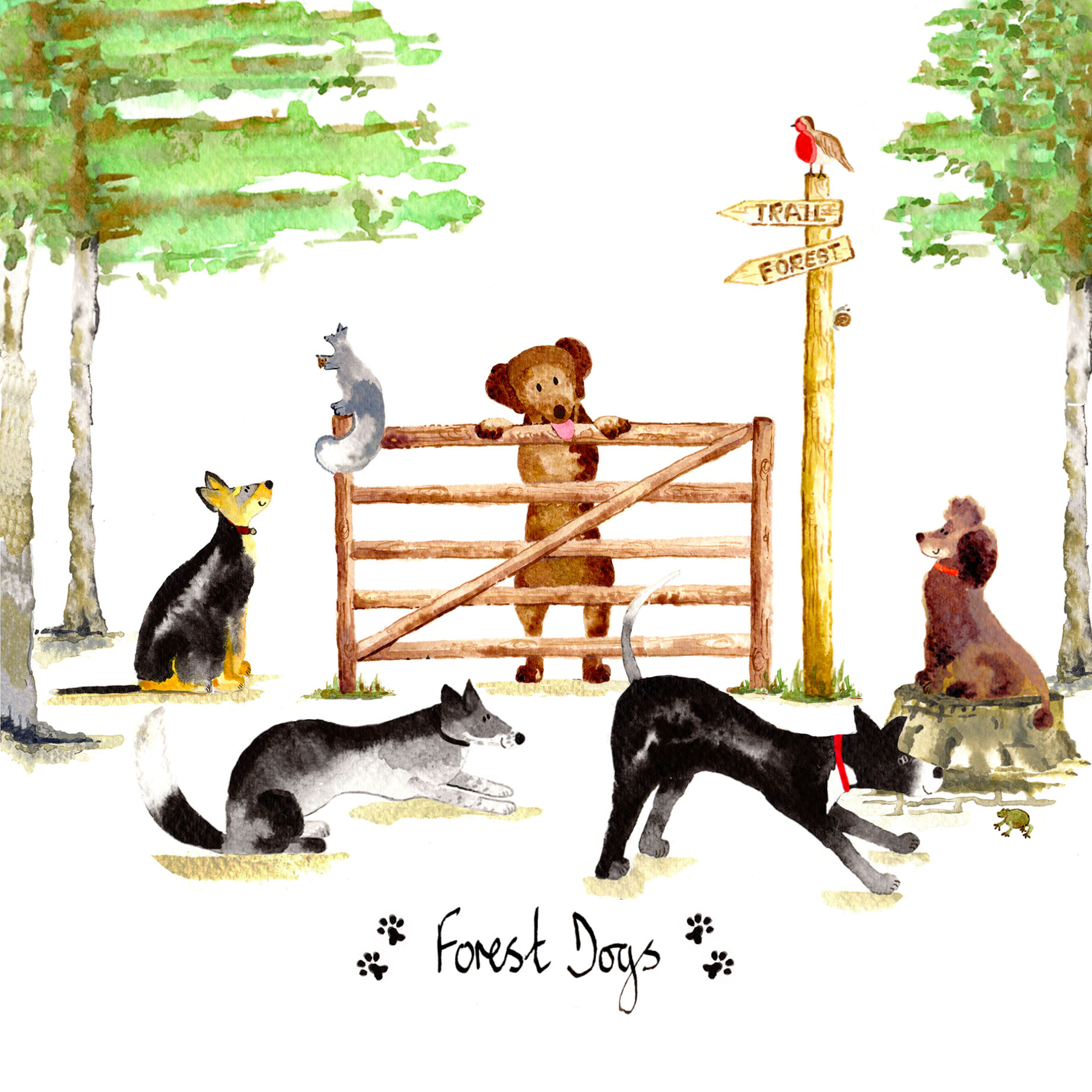 Forest Dogs Card