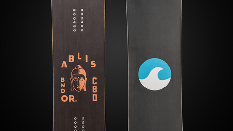 Custom SnoPlanks Snowboard