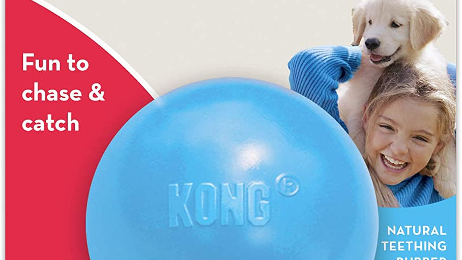KONG - Puppy Ball - Soft Rubber, Dog Fetch Toy for Teething Pups