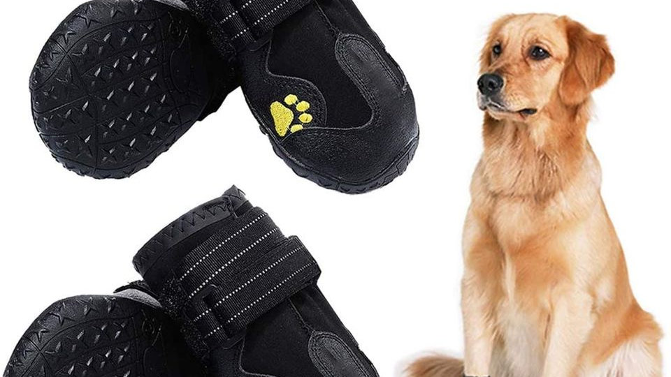 Waterproof Dog Boots, Outdoor Shoes, Rain Boots
